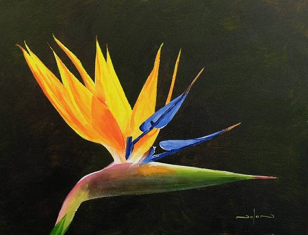 How To Paint A Strelitzia Flower In Acrylic Online Art Lessons