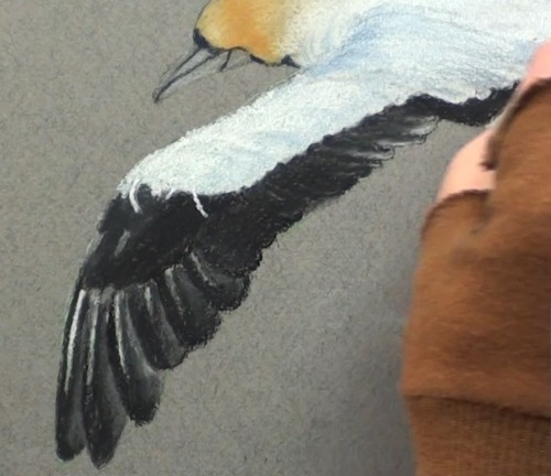 Smooth Edges Blender Paint Net