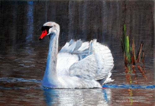 How To Draw A White Swan In Pastel Online Art Lessons