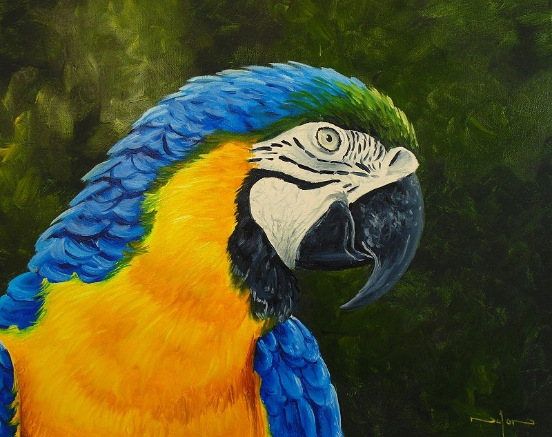 how to paint wet in wet parrot with water mixable oil paint