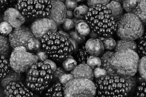 drawing ideas - berries