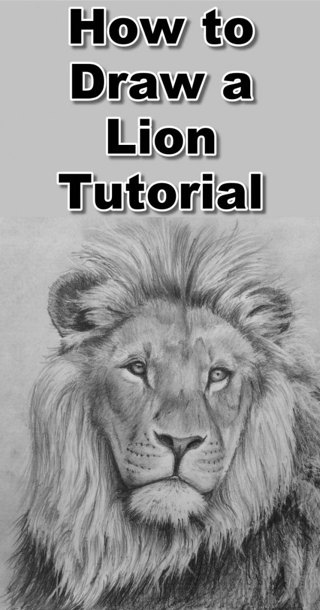 Learn how to draw a lion with this free pencil drawing tutorial.