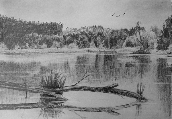 final drawing of reflections in the water