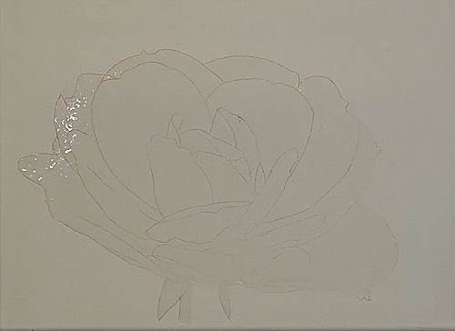 how to paint a rose in acrylic basic outlines