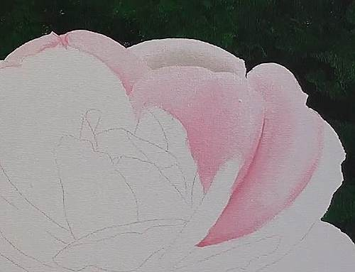 how to paint a rose in acrylic back petals first