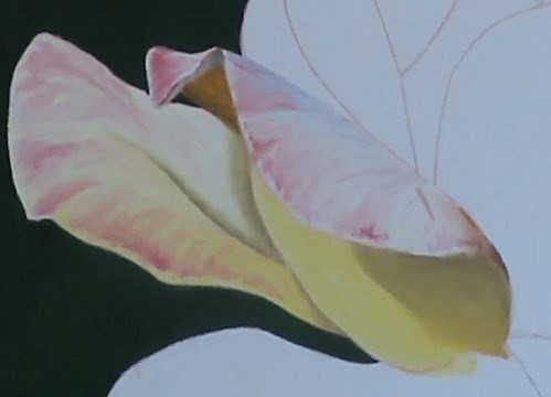 painting other petals