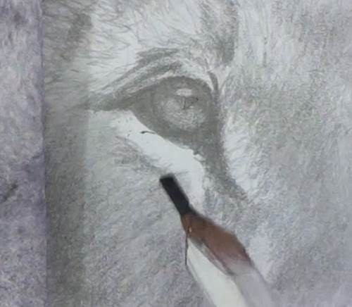 draw the lion eyes