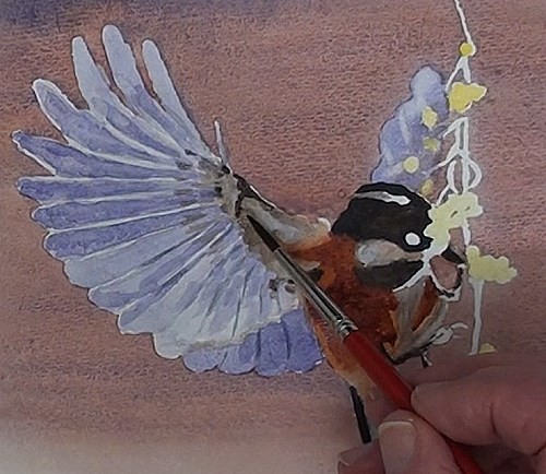 painting the base of the wing of the bird eating berries in watercolor
