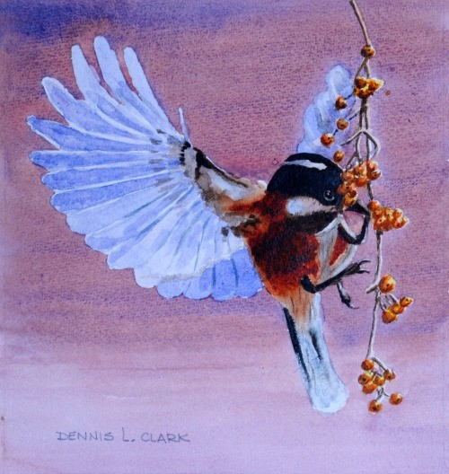 final painting of a bird eating berries in watercolor