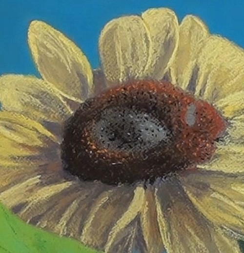 drawing the center ring - sunflower in pastel