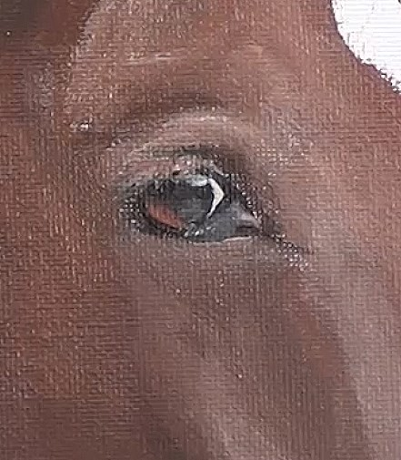 painting the eye - horse portrait in acrylic