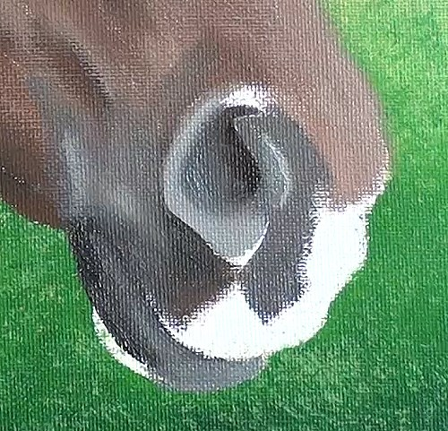 painting the nose - horse portrait in acrylic