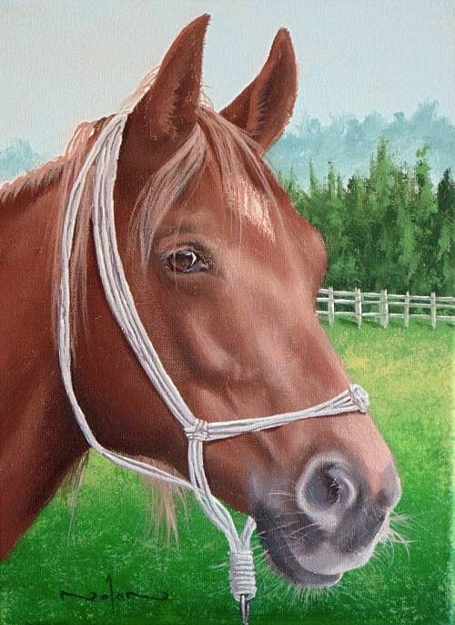 final painting horse portrait in acrylic