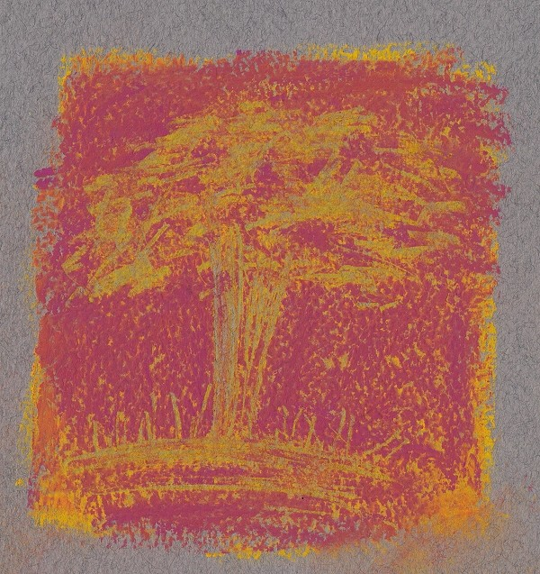Tree scratched out of layered pastel