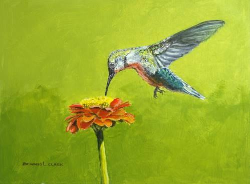 final-painting-humming-bird-at-zinnia-in-watercolor