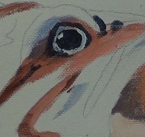 final-painting-fish-in-acrylic-eye