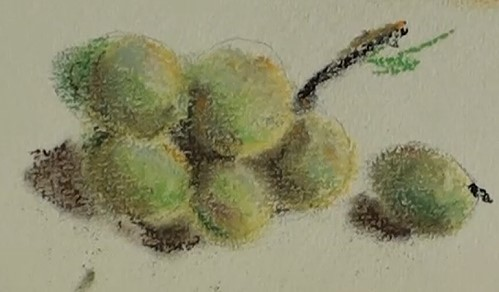 Lightly Pencil In A Few Grapes Block The Colours As You See Them Light To Dark Blend Add Shadowing On And Cast Shadows