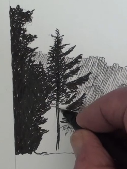 how-to-draw-a-meadow-scene-landscape-in-pen-and-ink-left-hand-side-trees