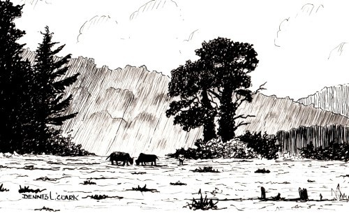 final-drawing-meadow-scene-in-pen-and-ink