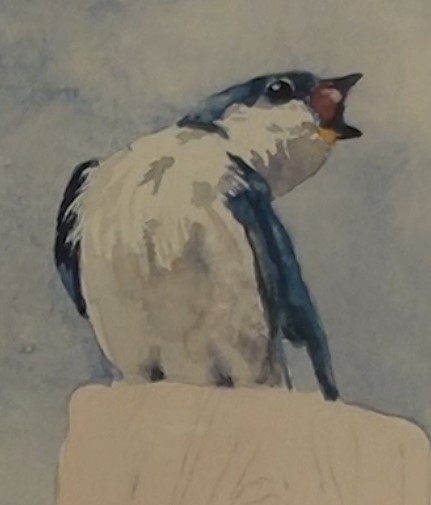 how-to-paint-two-swallows-in-watercolor-left-swallow