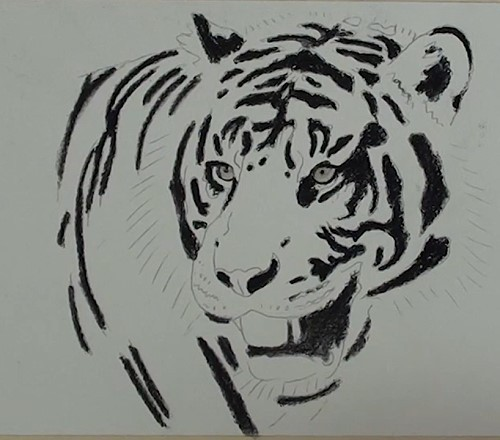 how-to-draw-a-tiger-portrait-in-pastel-body