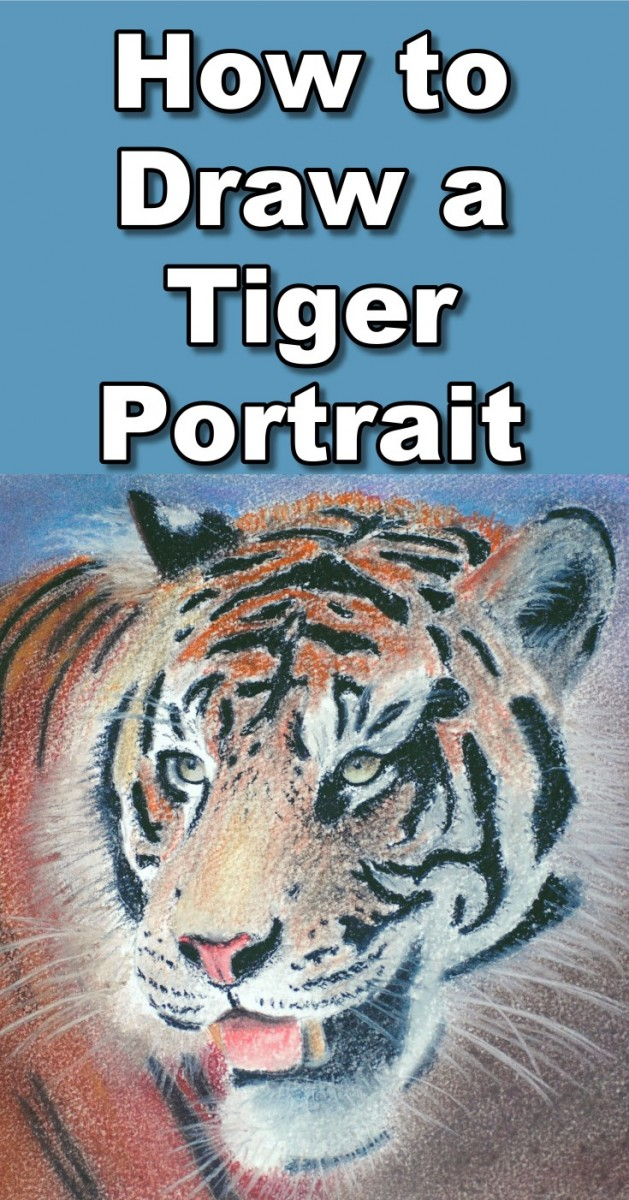 how-to-draw-a-tiger-portrait-in-pastel-pin