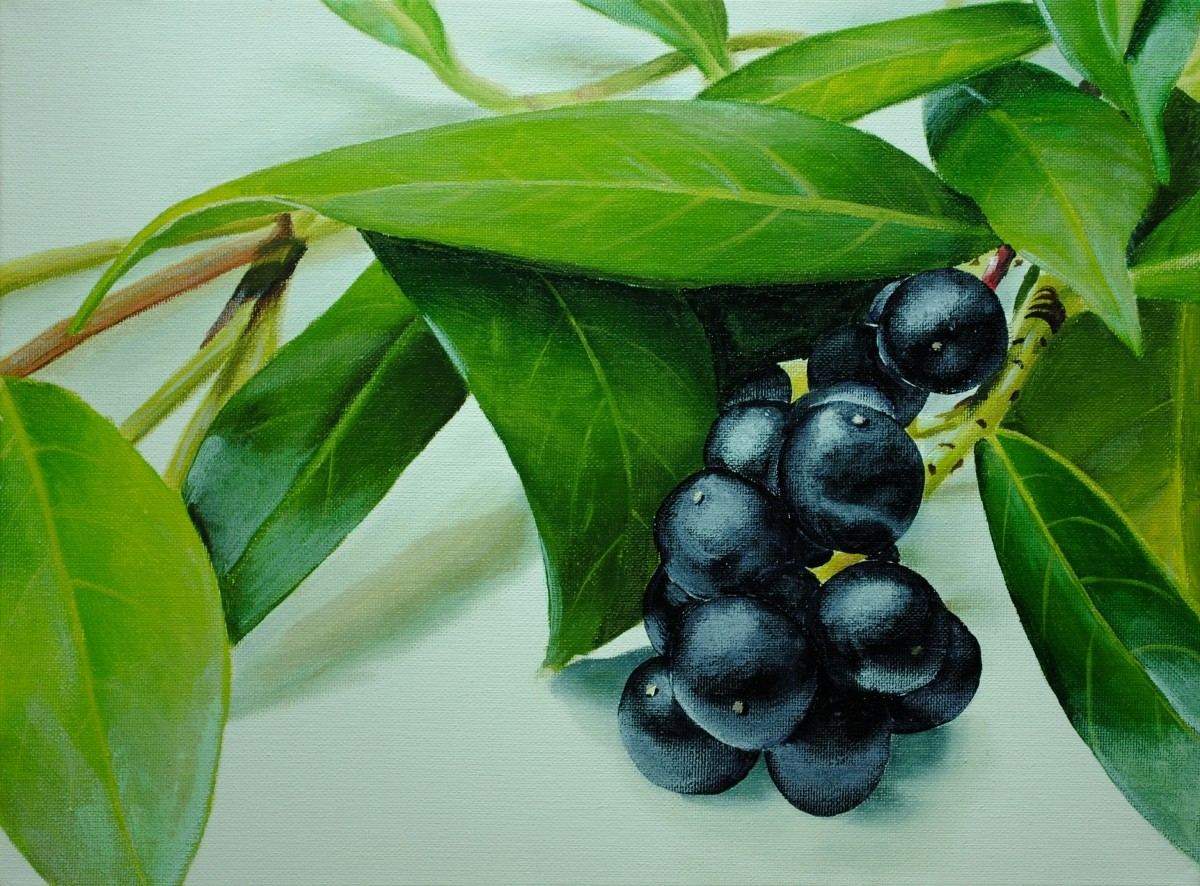 Learn how to paint realistic berries and leaves in acrylic with this online art lesson by Nolan Clark of the Paint Basket. how to paint leaves, how to paint berries, how to paint plants, how to paint still life, how to paint reflections, how to paint realistic leaves, how to paint photo realistic
