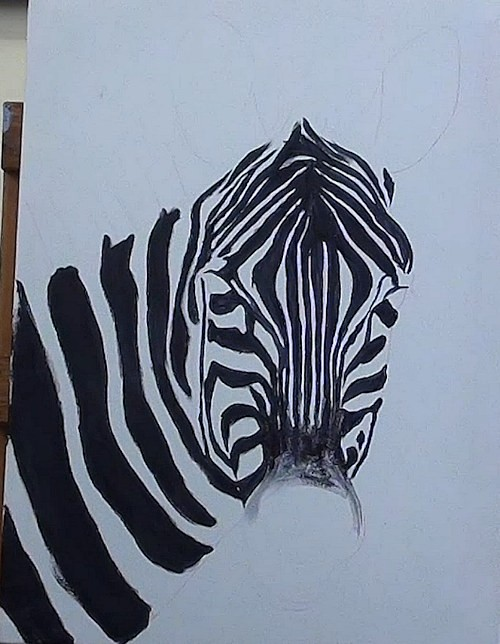 paint the black stripes of the zebra