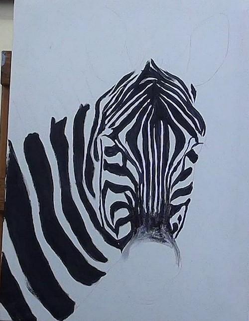 paint the black stripes of the zebra