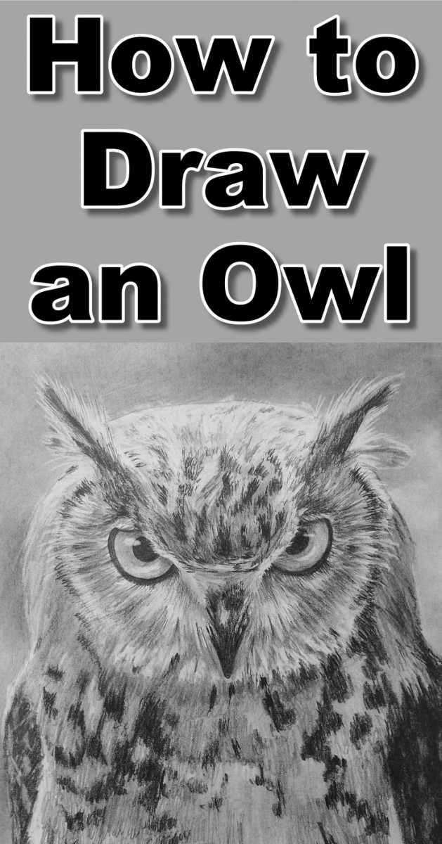How To Draw An Owl Online Art Lessons