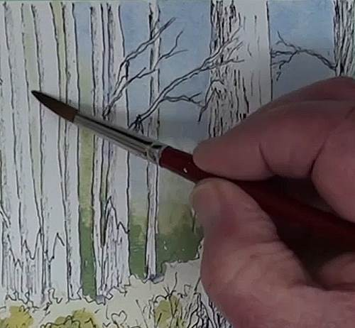 paint the sky for the bluegum trees in the forest in watercolor