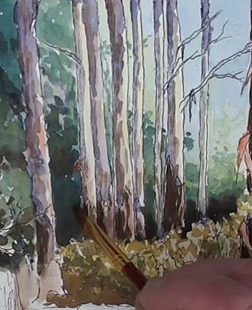 painting the distant trees for the bluegum trees painted in watercolor