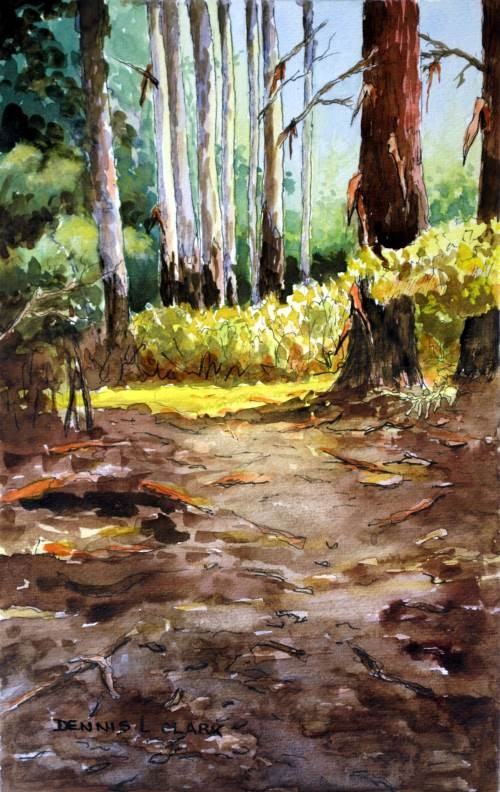 final painting of the bluegum trees in the forest in watercolor