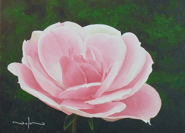 final painting of a rose painted in acrylic