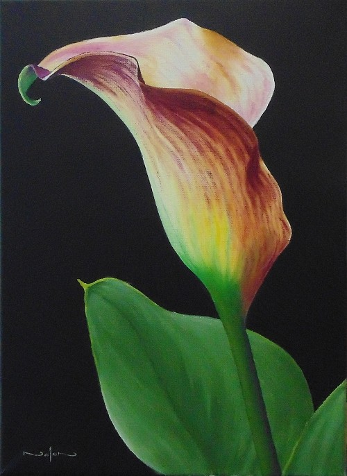 Final painting of the Calla Lily