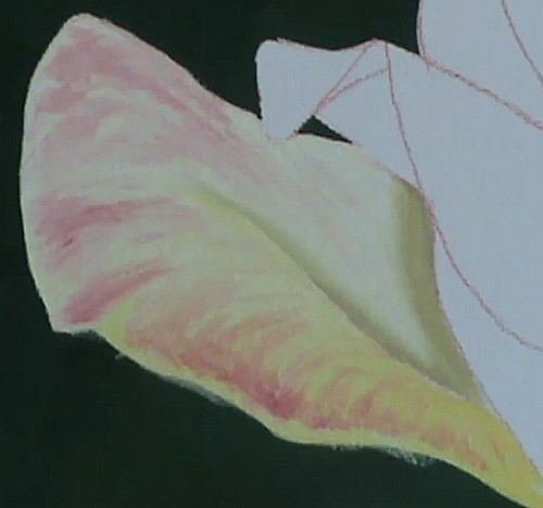 painting the first petal