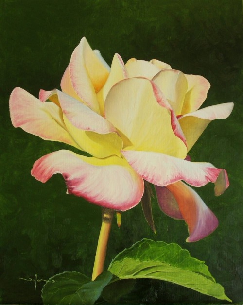final painting of painting realistic flowers in oil