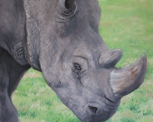 final painting of rhino