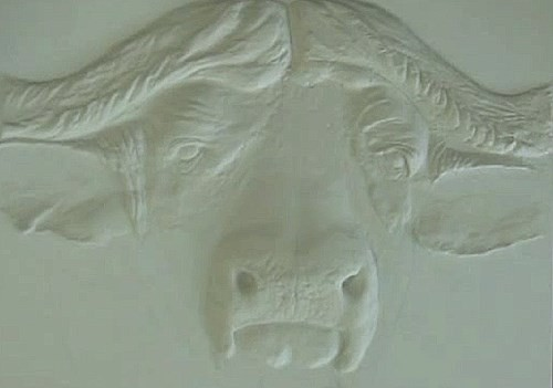 add texture paste onto the buffalo