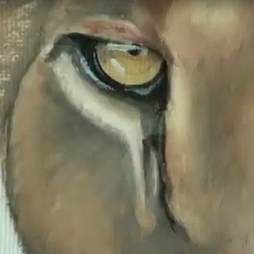 painting the left eye