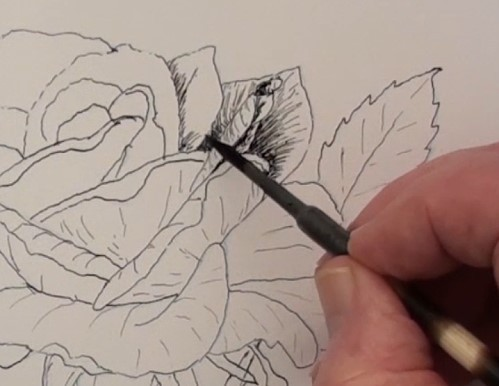 adding shadows to the upper petals