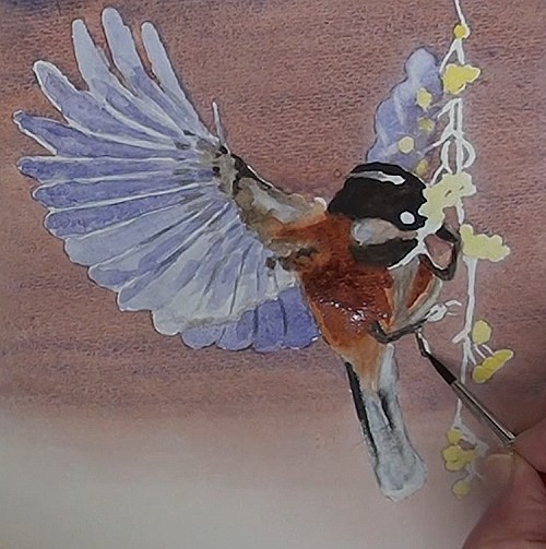 painting the feet and claws of bird eating berries in watercolor