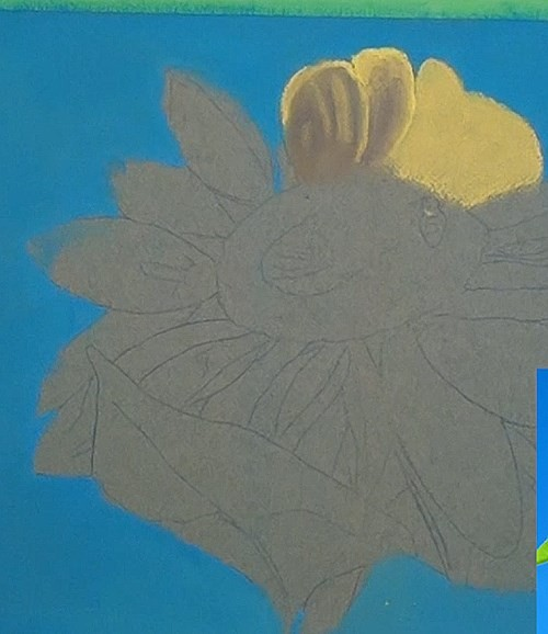 drawing petals - sunflower in pastel