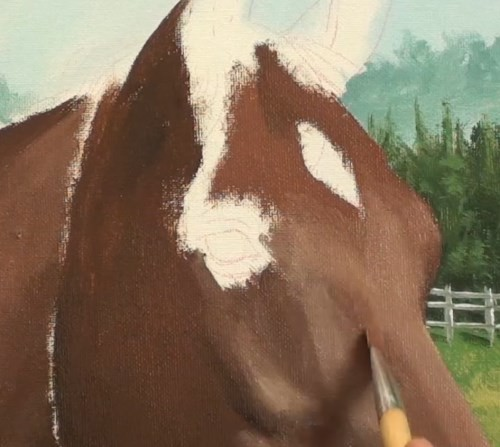 painting horse - horse portrait in acrylic