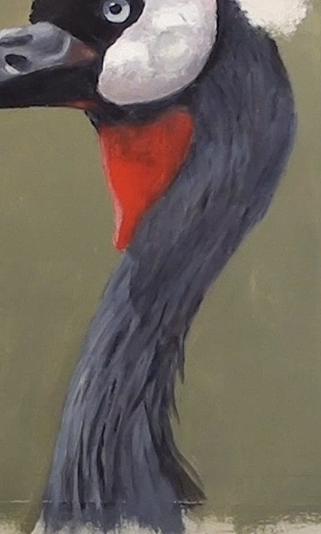 how-to-paint-a-crown-crested-crane-in-acrylic-neck-highlights