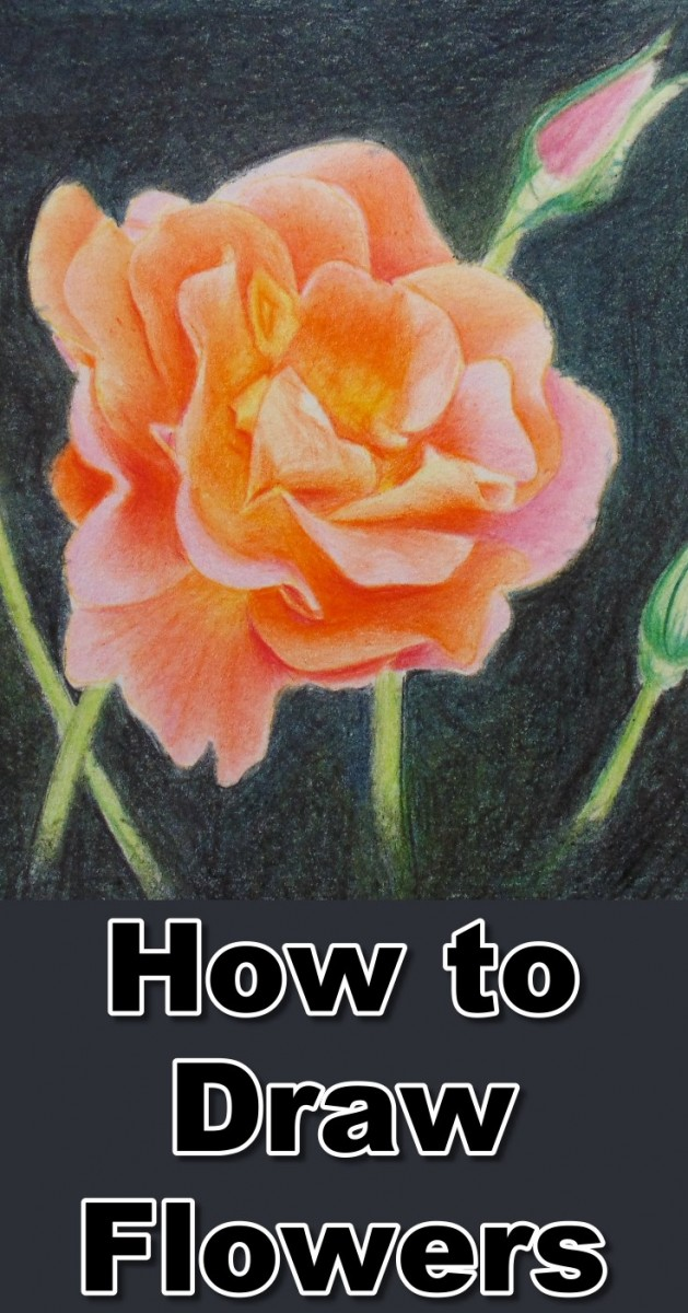 how-to-drawing-flowers-with-colored-pencils