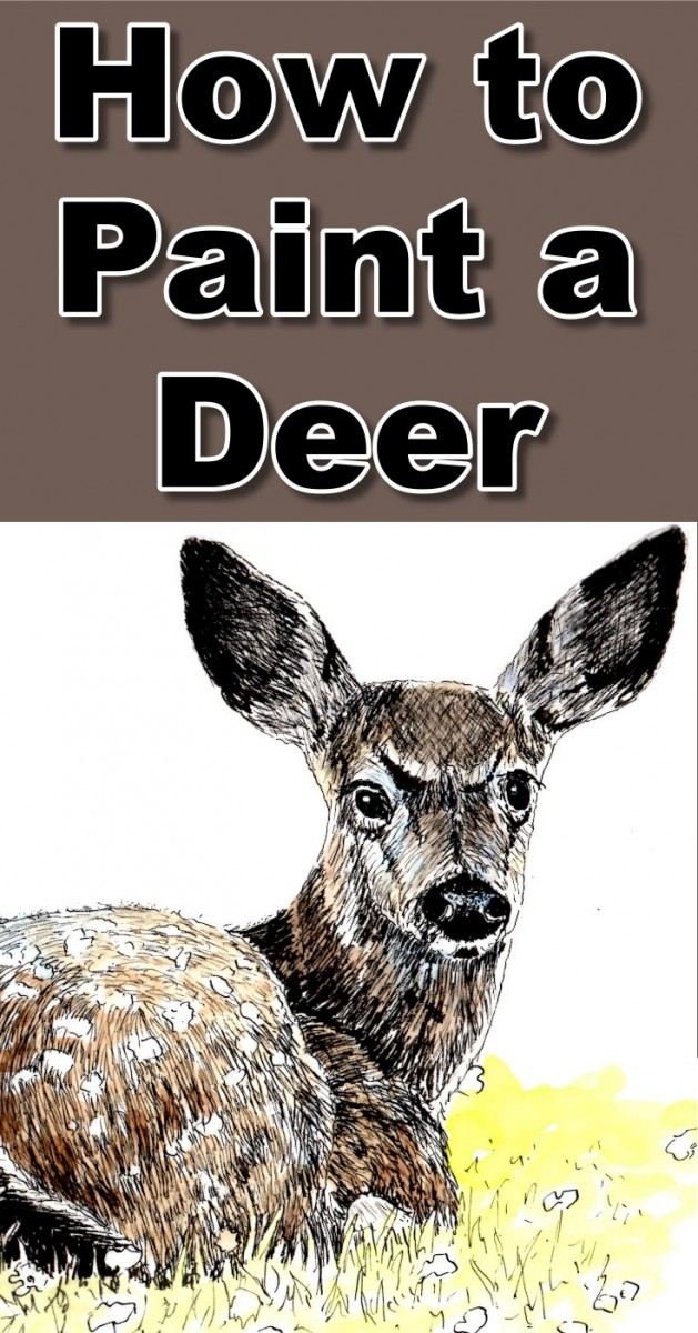 how-to-paint-deer-in-pen-and-ink