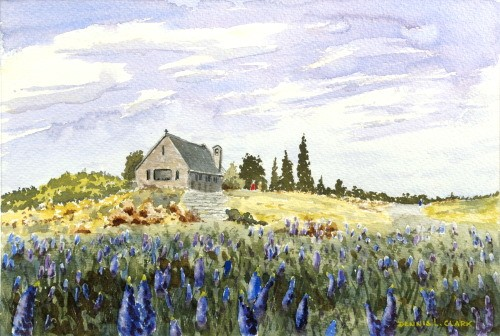 final-painting-lupines-lake-tekapo-in-watercolor
