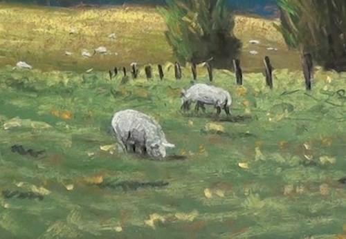 final-drawing-mountains-in-pastel-sheep