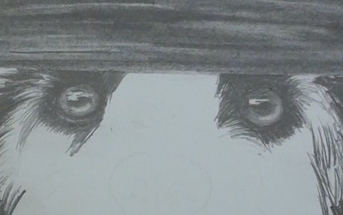 how-to-draw-a-dog-in-pencil-eyes